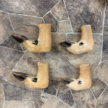 Deer Hoof Craft Pack For Sale #22020 @ The Taxidermy Store