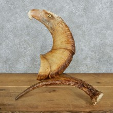 Eagle Head Bighorn Carving Taxidermy Mount #13077 For Sale @ The Taxidermy Store