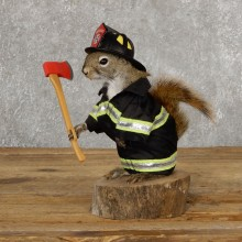 Firefighter Squirrel Novelty Mount For Sale #18901 @ The Taxidermy Store