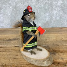 Firefighter Squirrel Novelty Mount For Sale #23003 @ The Taxidermy Store