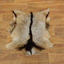 Goat Hide Taxidermy Tanned Skin For Sale #17888 @ The Taxidermy Store