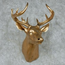 Golden Whitetail Deer Shoulder Taxidermy Mount #13113 For Sale @ The Taxidermy Store