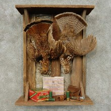Ruffed Grouse Harvest Bird Mount For Sale #16230 @ The Taxidermy Store