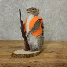 Hunting Squirrel Novelty Mount For Sale #17097 @ The Taxidermy Store