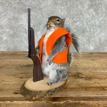 Hunting Squirrel Novelty Mount For Sale #22399 @ The Taxidermy Store