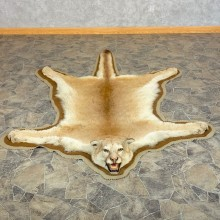 Mountain Lion Full-Size Rug For Sale #22548 @ The Taxidermy Store