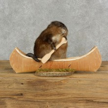 Canoeing Muskrat Novelty Mount For Sale #17123 @ The Taxidermy Store