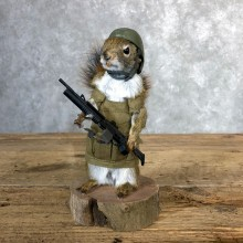 Patriot Squirrel Novelty Taxidermy Mount For Sale