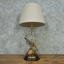 Quail Lamp Life-Size Taxidermy Bird Mount #13518 For Sale @ The Taxidermy Store