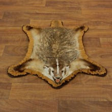Badger Full-Size Rug Mount For Sale #17882 @ The Taxidermy Store