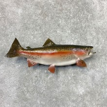 Rainbow Trout Fish Mount For Sale #22315 @ The Taxidermy Store
