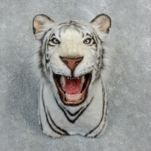 Reproduction White Bengal Tiger Mount #18302 For Sale @ The Taxidermy Store