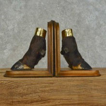 Sable Antelope Book Ends For Sale #16264 @ The Taxidermy Store