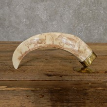 Scrimshawed Warthog Tooth For Sale #20131 @ The Taxidermy Store