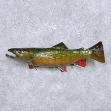 Tiger Trout Freshwater Fish Mount For Sale #14093 @ The Taxidermy Store