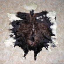 Yak Taxidermy Skin Rug #12344 For Sale @ The Taxidermy Store
