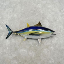 Yellow Fin Tuna Taxidermy Fish Mount For Sale