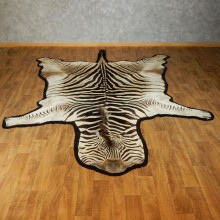 African Zebra Rug Taxidermy Mount For Sale #17423 @ The Taxidermy Store