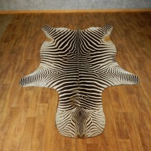 African Zebra Rug Taxidermy Mount For Sale #17425 @ The Taxidermy Store