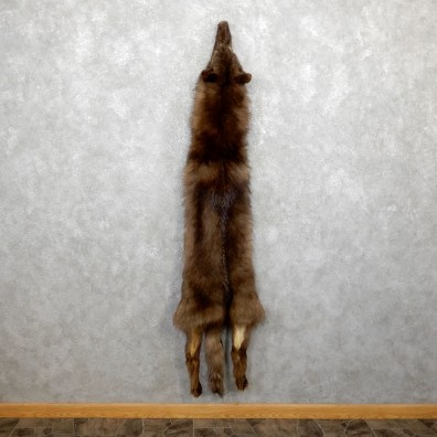 Alaskan Wolf Tanned Hide For Sale #19426 @ The Taxidermy Store