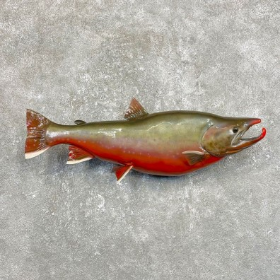 Arctic Char Fish Mount #25088 For Sale @ The Taxidermy Store