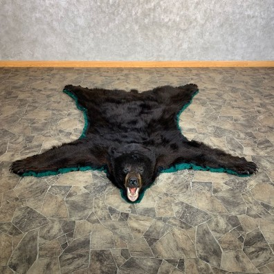 Black Bear Full-Size Rug For Sale #22538 @ The Taxidermy Store