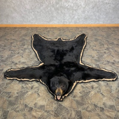 Black Bear Full-Size Rug For Sale #22693 @ The Taxidermy Store