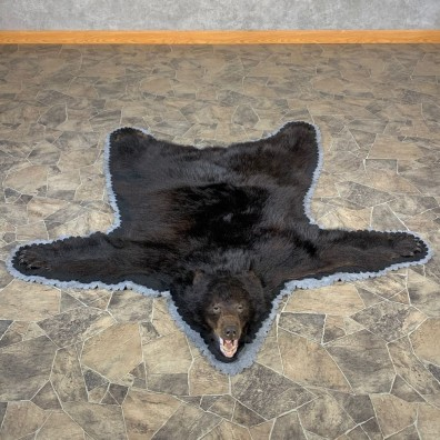 Black Bear Full-Size Rug For Sale #22699 @ The Taxidermy Store