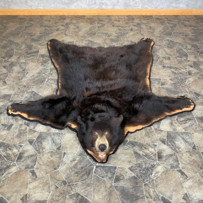 Black Bear Full-Size Rug For Sale #23324 @ The Taxidermy Store
