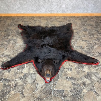 Black Bear Full-Size Rug For Sale #23326 @ The Taxidermy Store