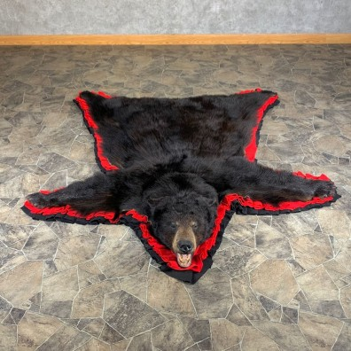 Black Bear Full-Size Rug For Sale #24009 @ The Taxidermy Store