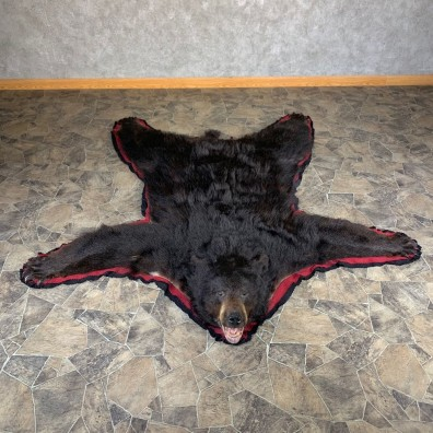 Black Bear Full-Size Rug For Sale #24012 @ The Taxidermy Store