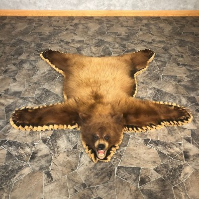 Blonde Black Bear Full-Size Rug For Sale #20085 @ The Taxidermy Store