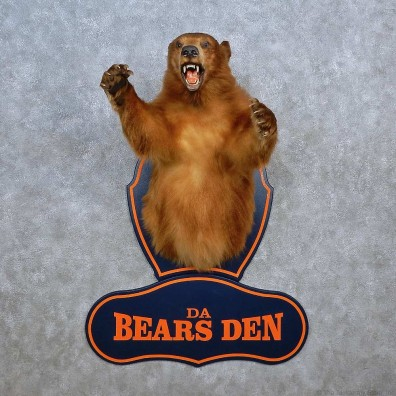 Da Bears Den 1/2-Life-Size Mount For Sale #15610 @ The Taxidermy Store
