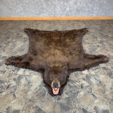 Cinnamon Phase Black Bear Full-Size Rug For Sale #23328 @ The Taxidermy Store