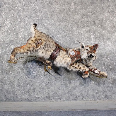 Legendermy Steampunk Bobcat Mount #11632 For Sale @ The Taxidermy Store