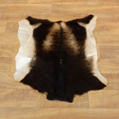 Goat Hide Taxidermy Tanned Skin For Sale #17886 @ The Taxidermy Store