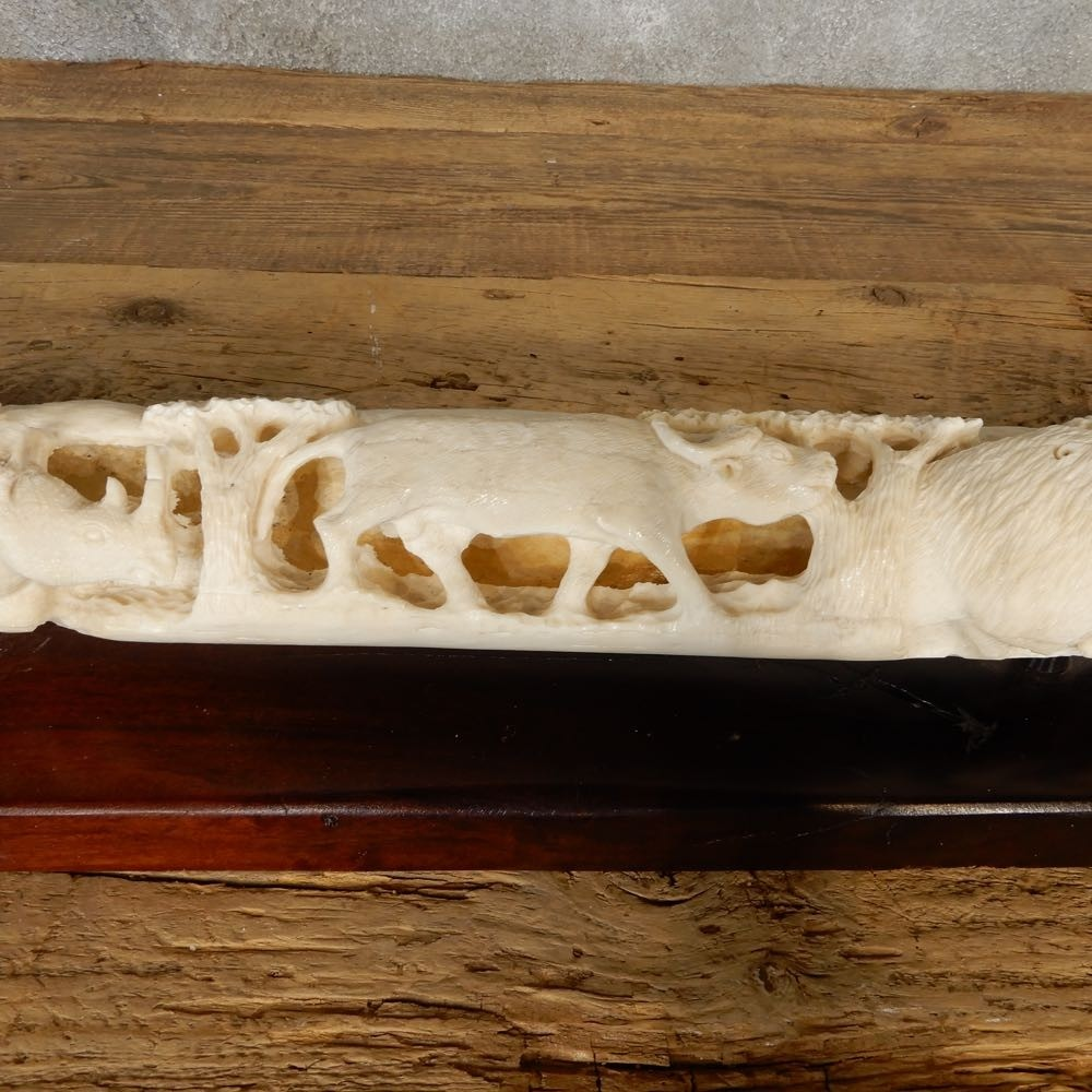 Carved Giraffe Bone For Sale 20637 The Taxidermy Store