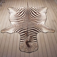Zebra Rug Mount #11054 - The Taxidermy Store