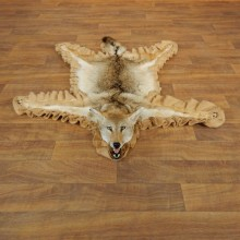 Coyote Rug Taxidermy Mount For Sale #17881 @ The Taxidermy Store