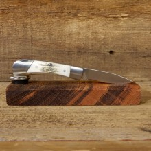 Mini Folding Pocket Knife with Elk Antler Handle For Sale #19221@ The Taxidermy Store