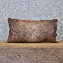 African Blesbok Hide Pillow #12047 For Sale @ The Taxidermy Store
