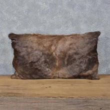 African Blesbok Hide Pillow #12058 For Sale @ The Taxidermy Store