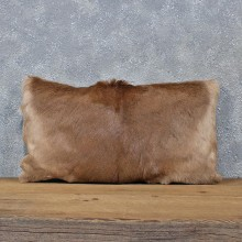 African Impala Hide Pillow #12052 For Sale @ The Taxidermy Store