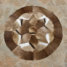 Springbok Taxidermy Rug For Sale #12325 For Sale @ The Taxidermy Store
