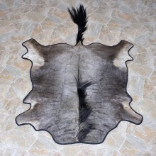 African Wildebeest Full Rug Mount #12335 For Sale @ The Taxidermy Store
