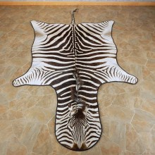 African Zebra Full-Size Rug For Sale #15705 @ The Taxidermy Store
