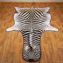 African Zebra Rug Mount For Sale #15266 @ The Taxidermy Store