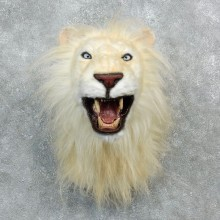 Reproduction African White Lion Shoulder Mount #18296 For Sale @ The Taxidermy Store