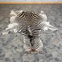 African Zebra Full Hide For Sale